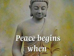Mai bine să ai pace